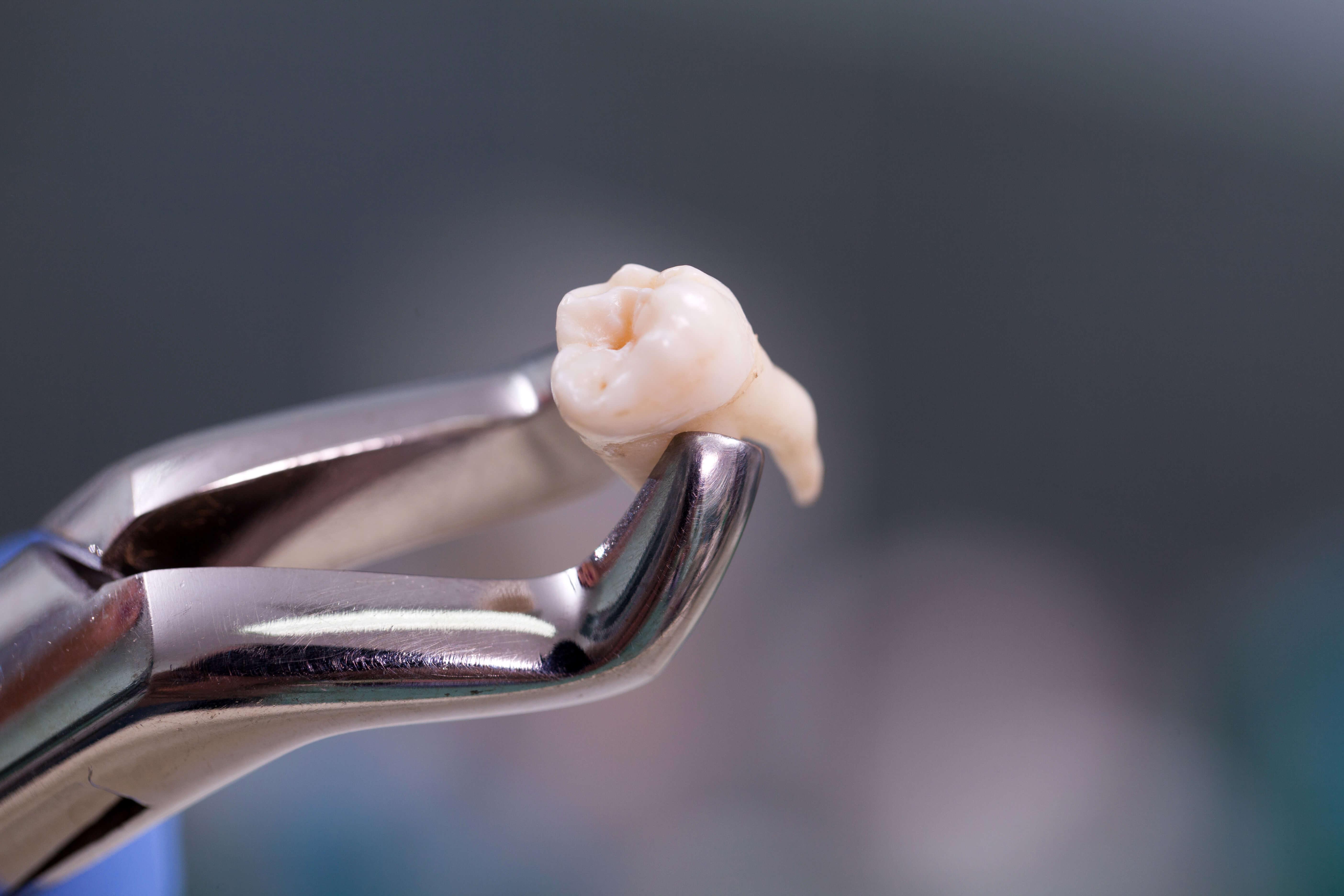 Dental - mendelsohn dental